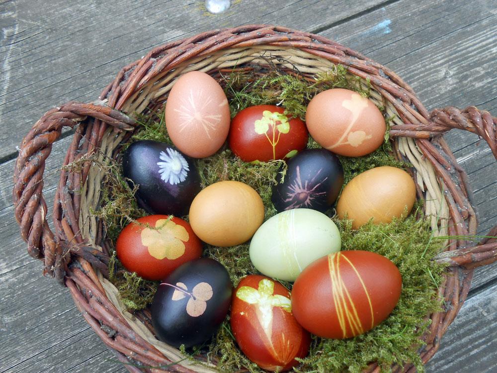 Osterei färben mit natürlichen Mitteln